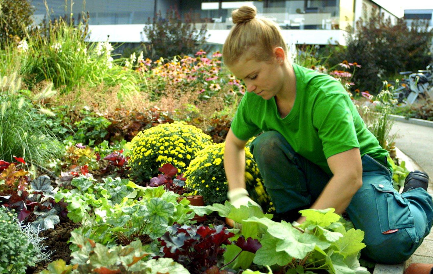 Arbeit Gartenbaubetrieb 2