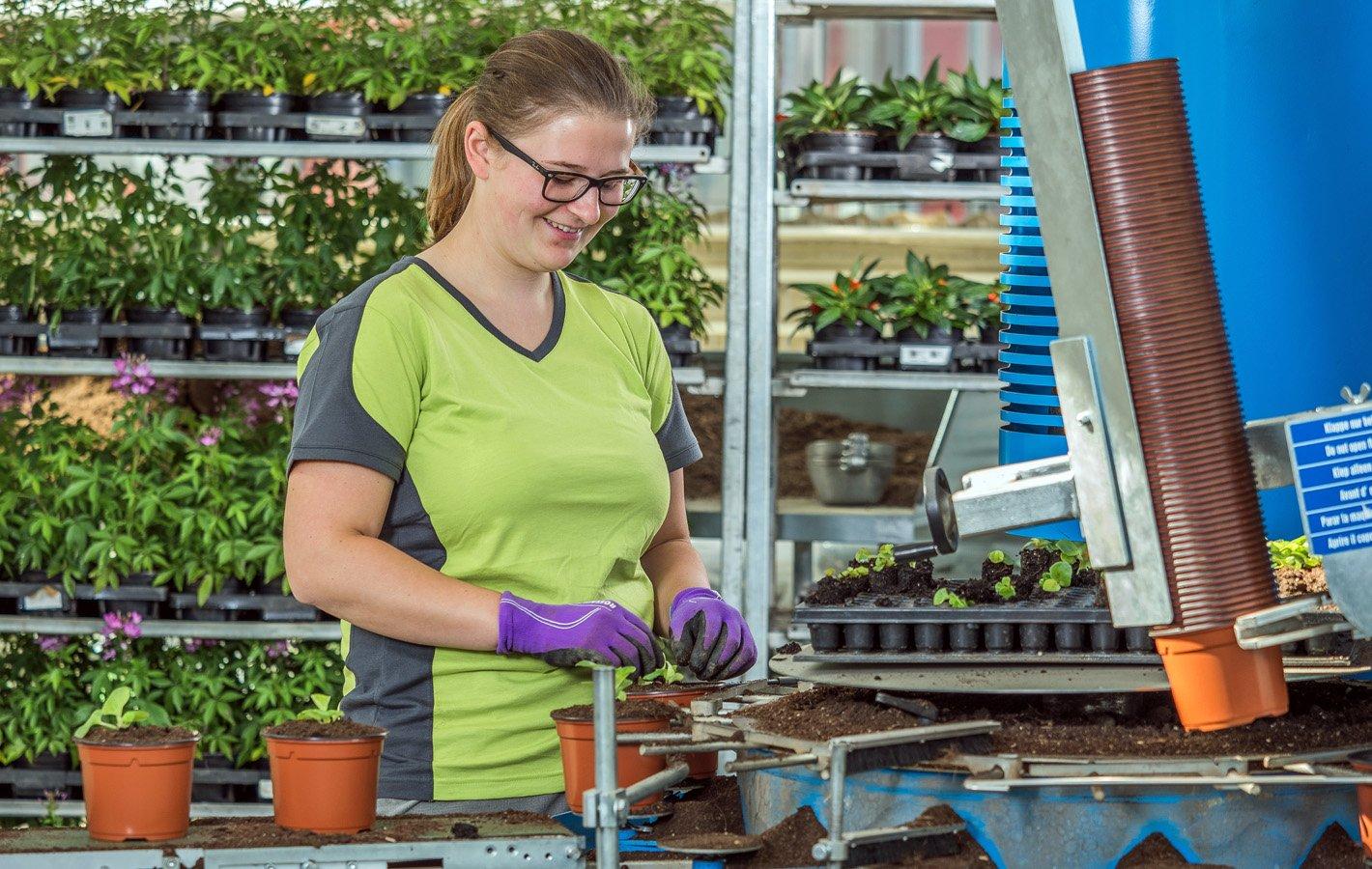 Berufswerbung Zierpflanzen2