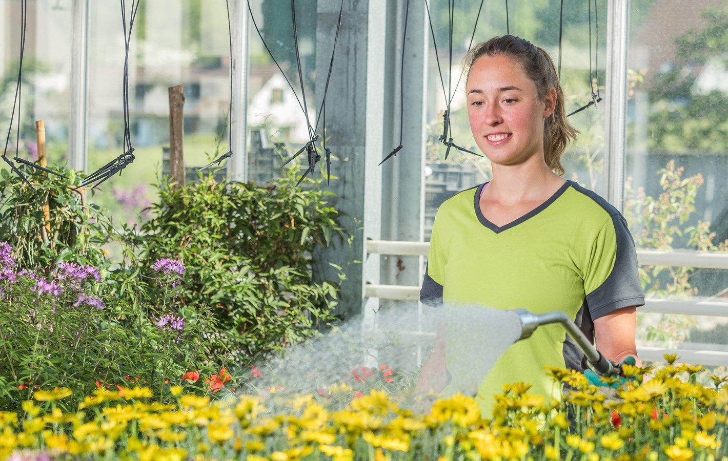 Berufswerbung Zierpflanzen1
