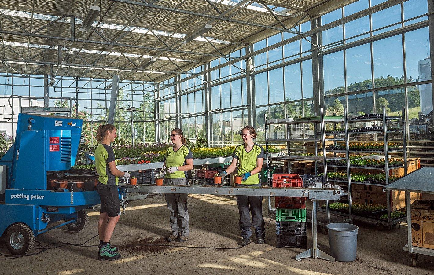 Berufswerbung Zierpflanzen