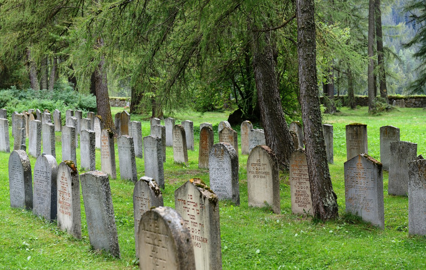 Friedhoftagung 2016