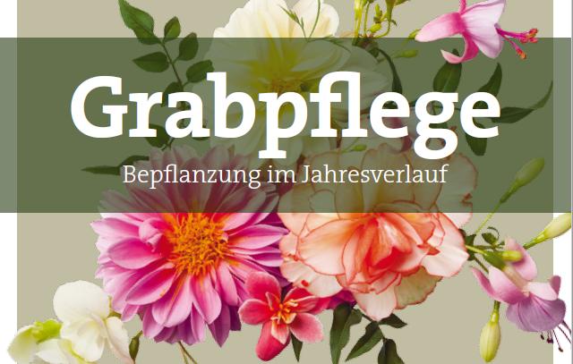 Leporello Grabpflege Bepflanzung im Jahresverlauf