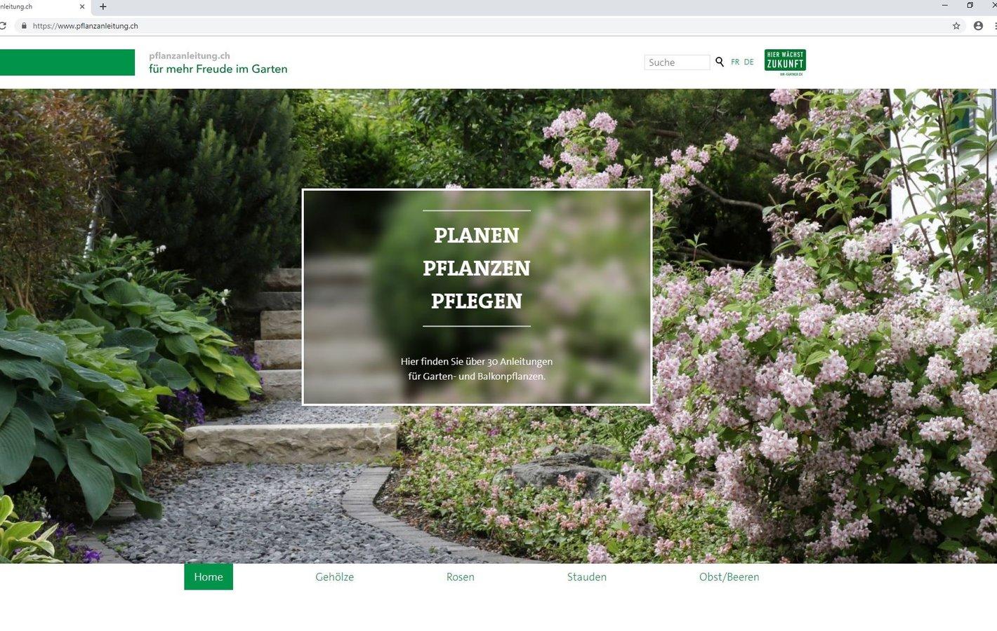 Einstieg Pflanzanleitung.ch
