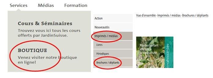 Invasive Neophyten bestellen fr