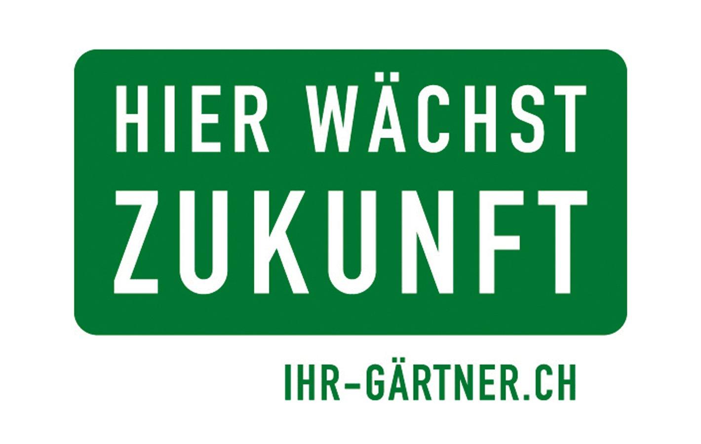 HWZ Logo