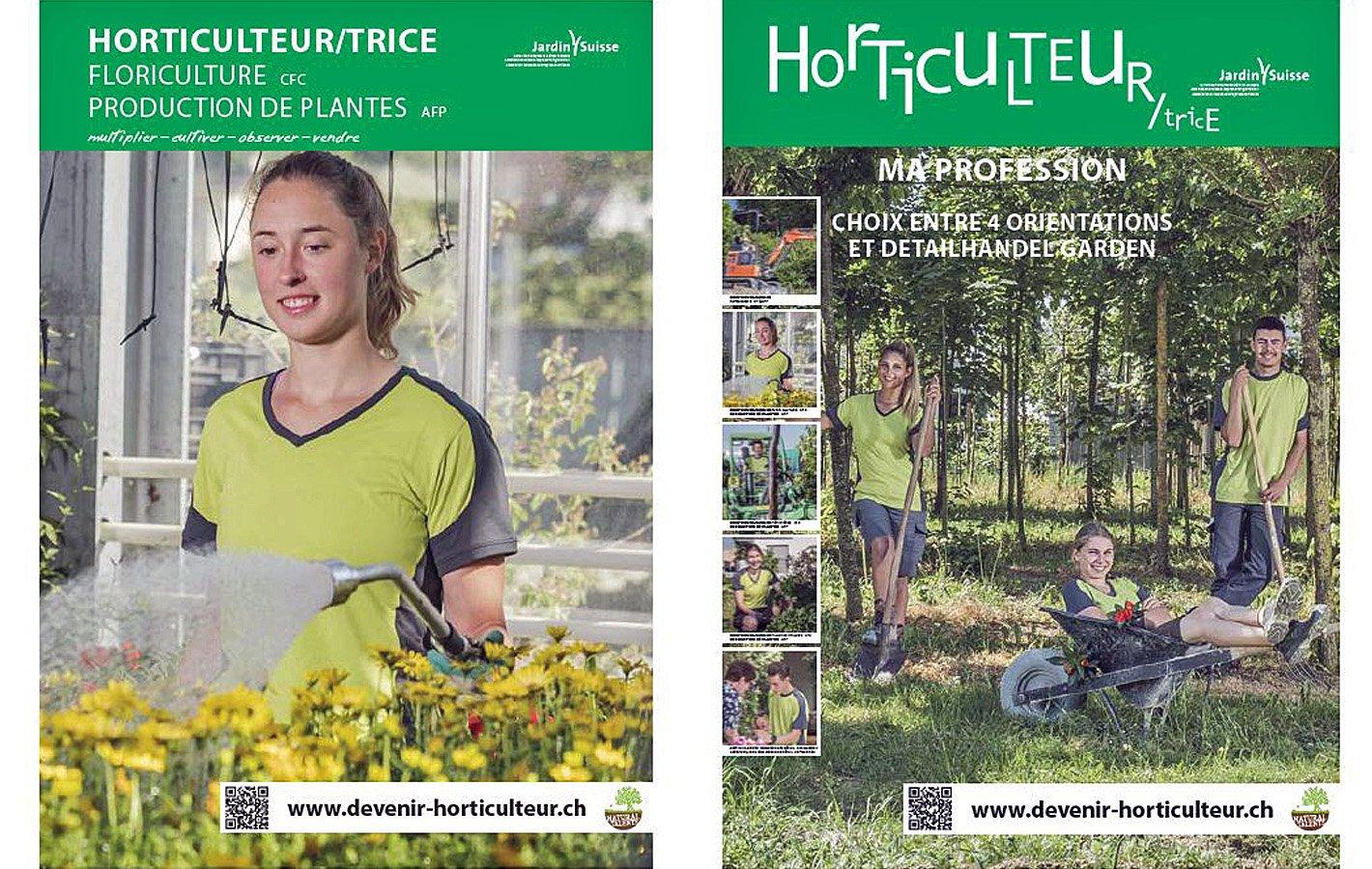 Plakat Zierpflanzen_alle FR