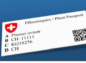Sistema del passaporto fitosanitario dal 2020