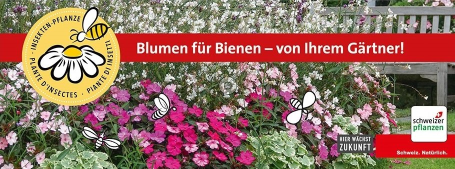 Insektenpflanzen_Stoffbanner