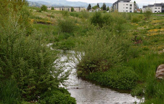 Umweltschutz_biodiversität_bild4_web