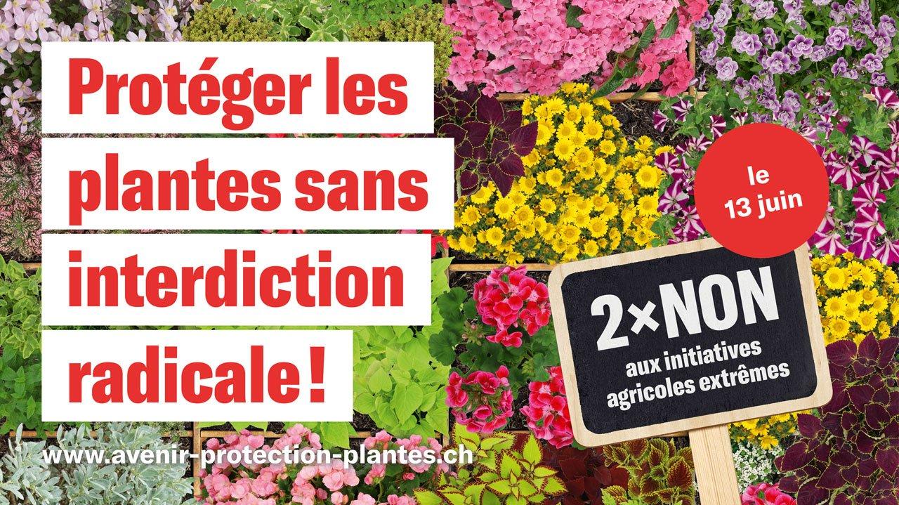 Trinkwasser- und Pestizidinitiative_FR.jpg