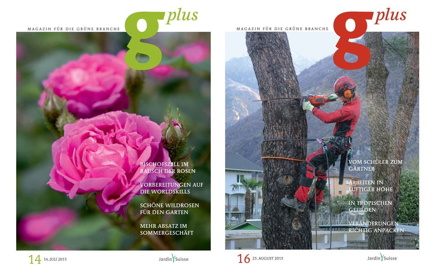 gplus cover 3.jpg
