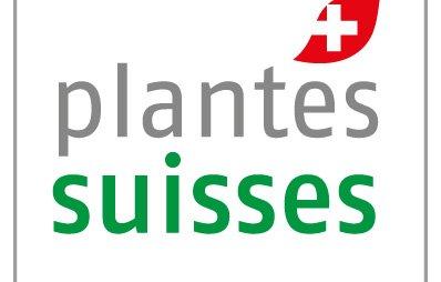 plantes suisses teaser